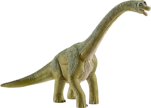 Brachiosaurus (14581)