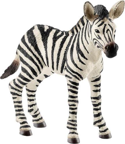 Zebra Fohlen (14811)