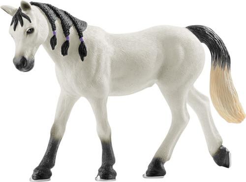 Araber Stute (13908)