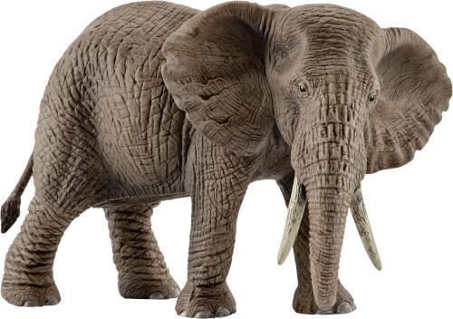 Afrikanische Elefantenkuh (14761)