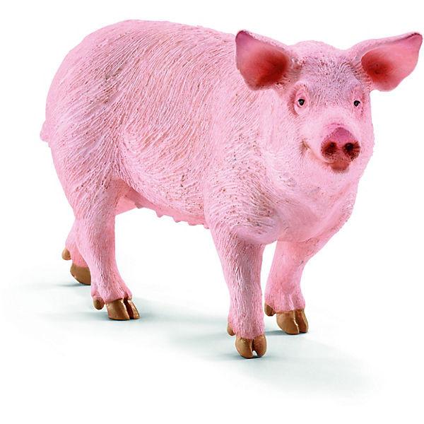 Schwein (13782)