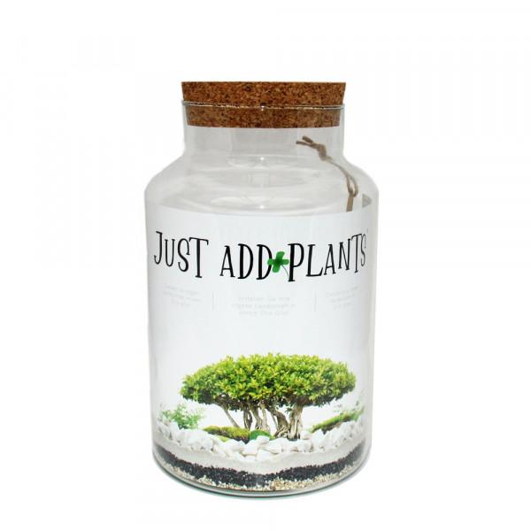 """Pflanzen-Terrarium """"Just Add Plants"""""""