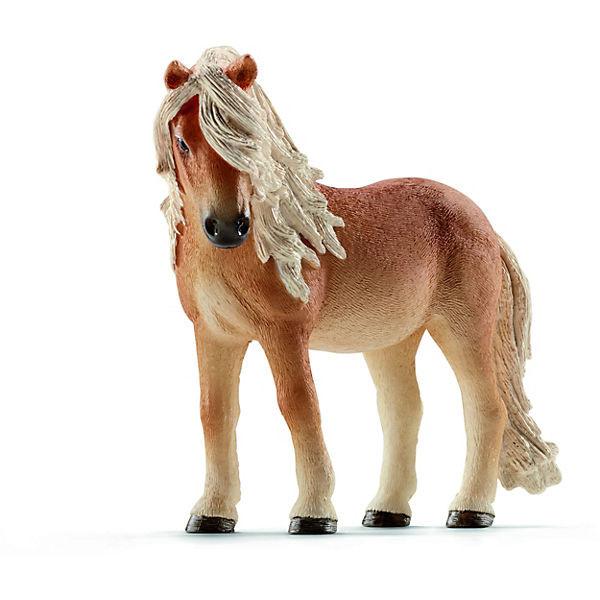 Island Pony Stute (13790)