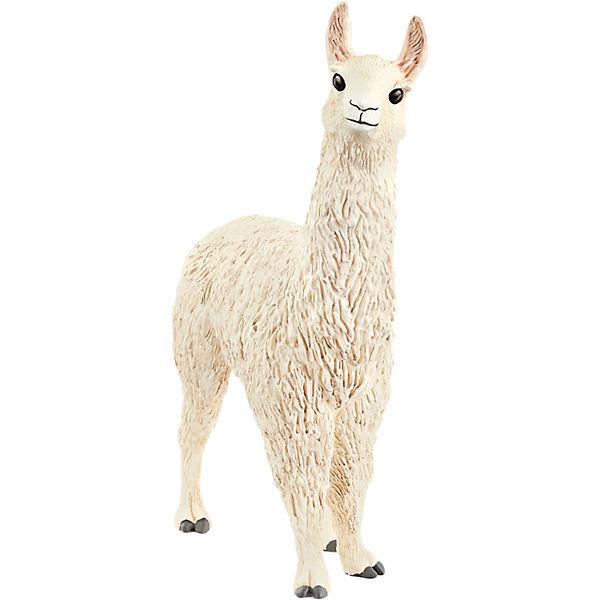 Lama (13920)