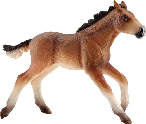 Mustang Fohlen (13807)