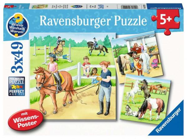 Puzzle Ein Tag auf dem Reiterhof