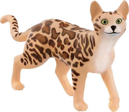 Bengal Katze (13918)