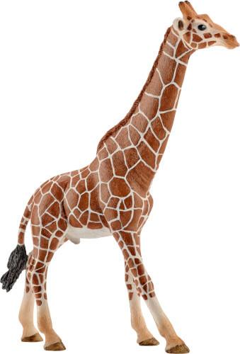 Giraffenbulle (14749)
