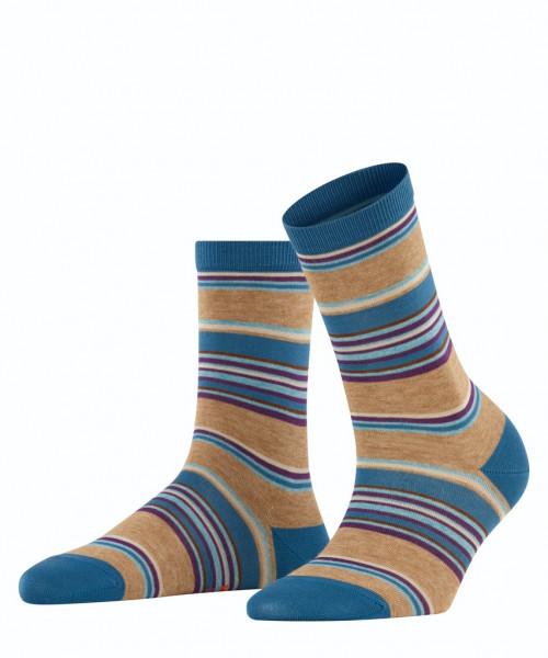 Socken Pop Stripe