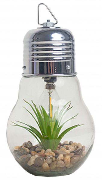 Boltze Glühlampe mit LED